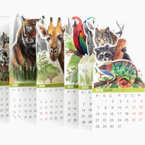 Akademi Çocuk - Akademi 2019-2020 World of Animals Takvim 0282