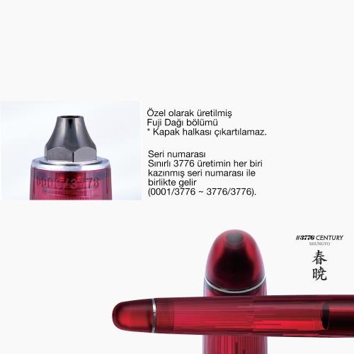 Platinum 3776 Century Shungyo Limited Edition Dolma Kalem